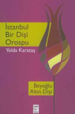 istanbul-bir-disi